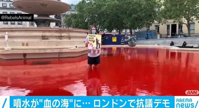 """「噴水が""""血の海」 動物愛護団体の活動家が抗議デモでやらかしてしまう。"""