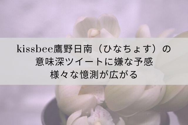 【訃報】アイドルグループ「KissBee」鷹野日南さん急死。原因は?